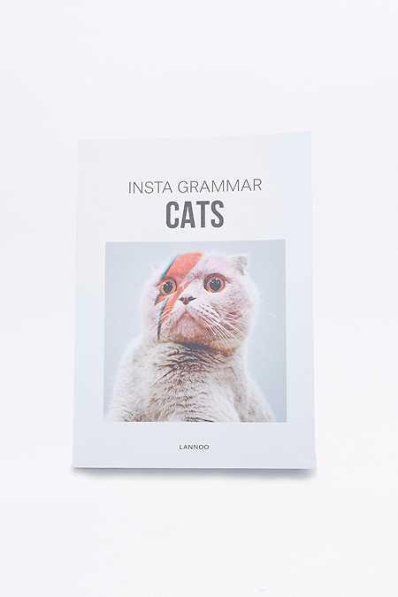 Livre Insta Grammar : Cats