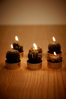 Cactus and Succulent Tealight Candles