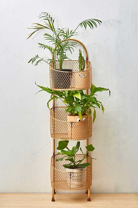 Three-Tier Storage + Plant Rack