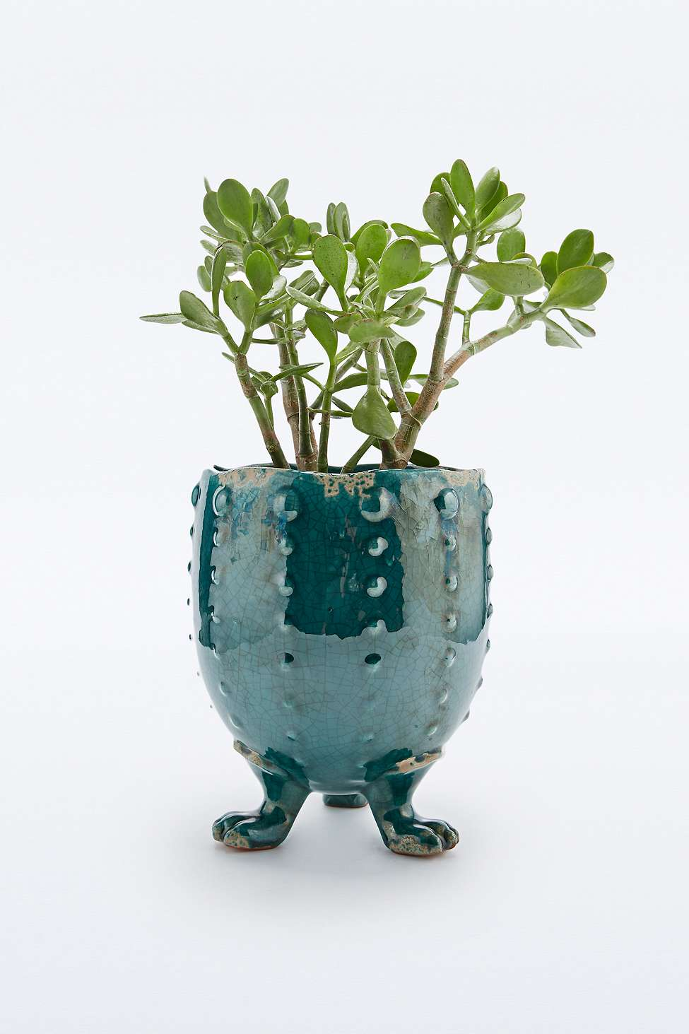 Cache pot urban outfitters