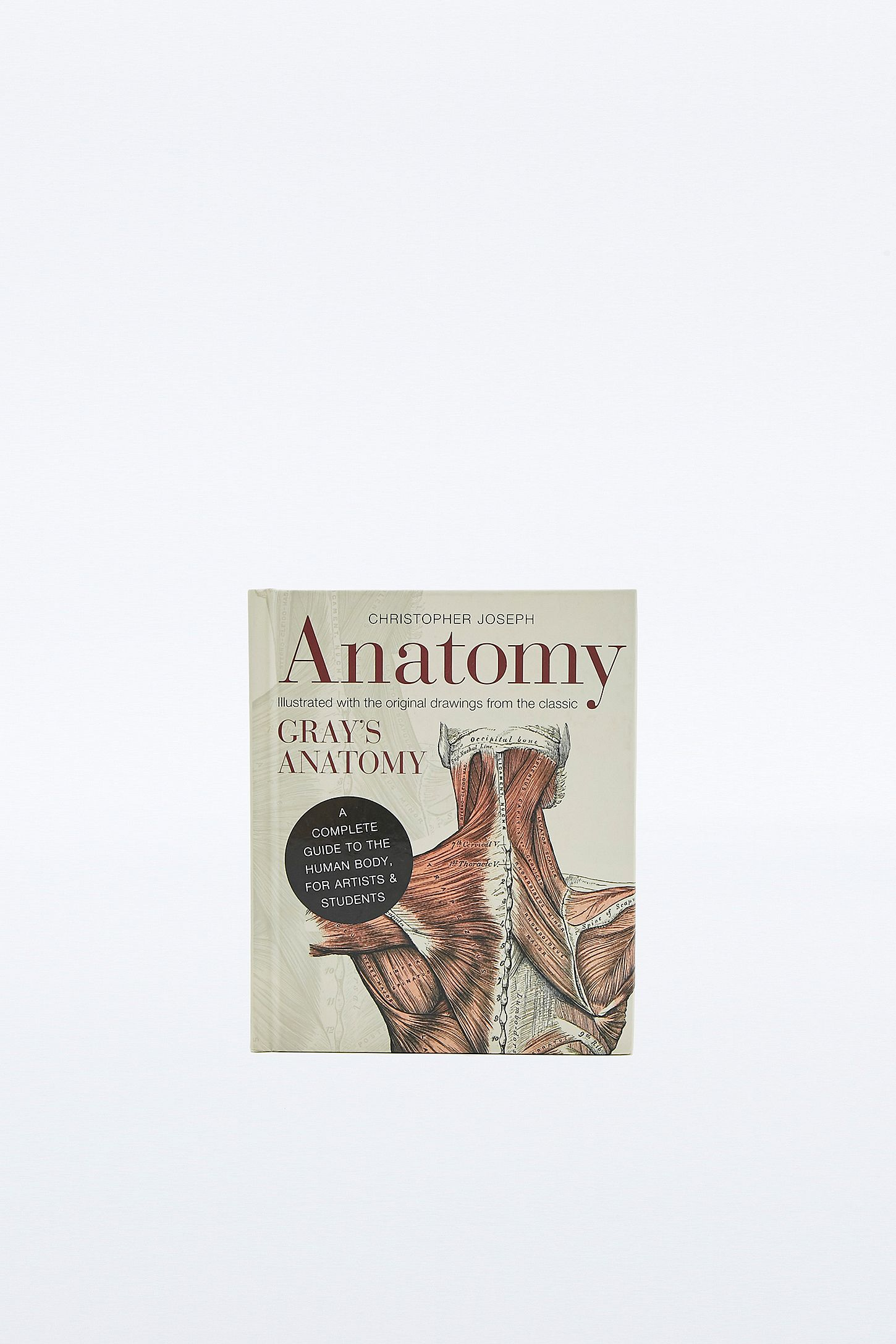 Buch Anatomy A Complete Guide To The Human Body Urban Outfitters De